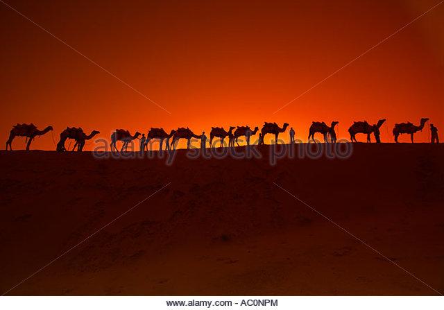 top thar desert sunset - photo #7