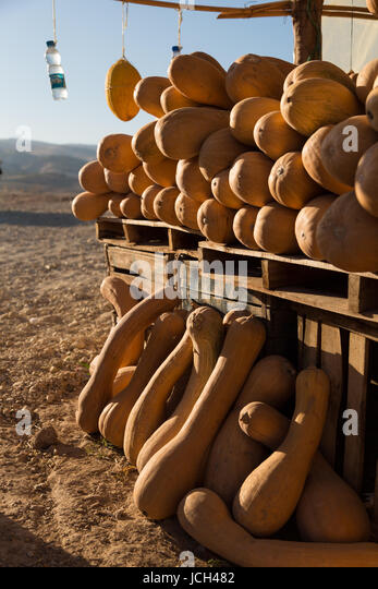 A roadside stop above a reservoir near Meknes in Morocco is piled with orange suash in many different shapes. - Stock Image