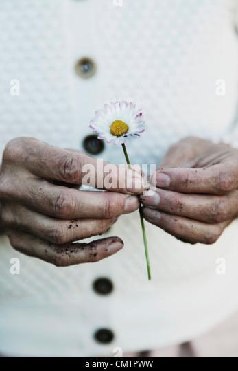 Flower Image Stock Photos Amp Flower Image Stock Images Alamy