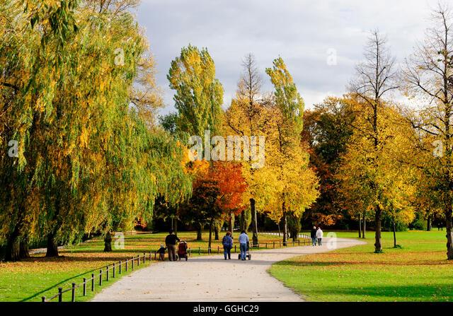 Autumn In Englisch Garten, Munich, Upper Bavaria, Bavaria, Germany   Stock  Image