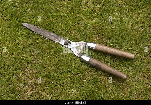 garden shears stock photos garden shears stock images