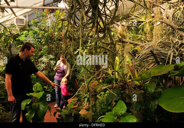 Visitors Enjoy Butterfly Magic At The Tucson Botanical Gardens, Tucson,  Arizona, USA.