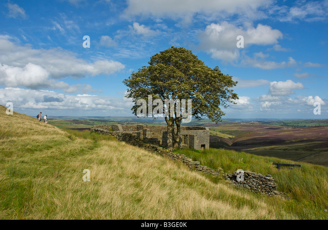 an analysis of the england environment in the novel wuthering heights by emily bronte Wuthering heights as socio-economic novel in 1801 the industrial revolution was under way in england when emily born into the world of wuthering heights.