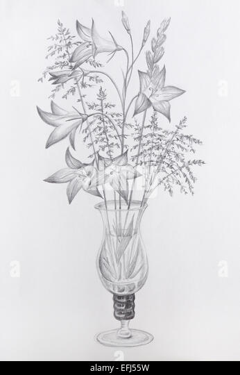 Pencil Drawings Of Flowers Flower Pencil Sketches Images About