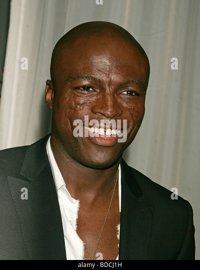 The Singer Seal - image 11