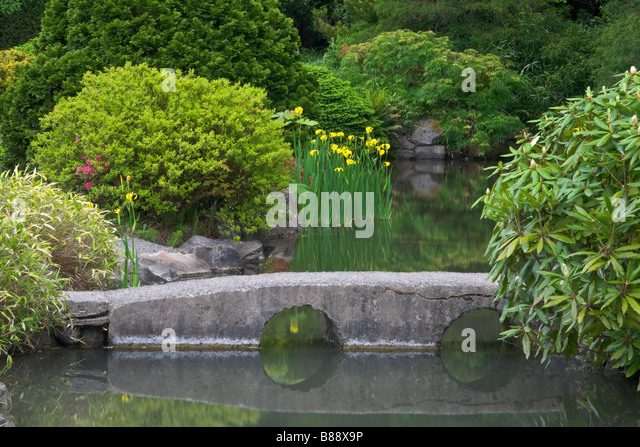 seattle wa kubota garden city park a stone bridge spans a pond in the - Japanese Garden Stone Bridge
