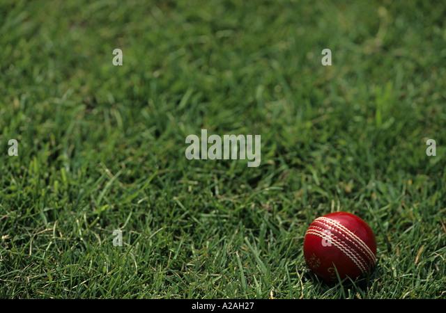 White cricket ball on grass
