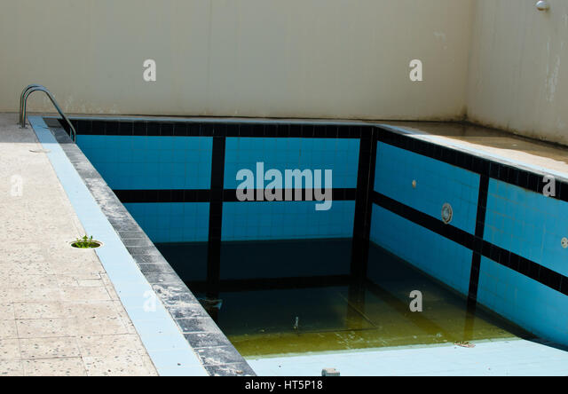 Mosquitoes Water Stock Photos Mosquitoes Water Stock Images Alamy