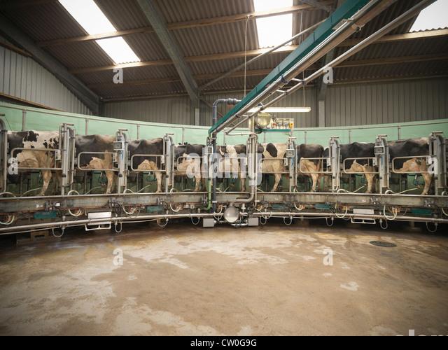 hucow machine