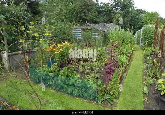 Kitchen garden fence stock photos kitchen garden fence for Kitchen garden fence