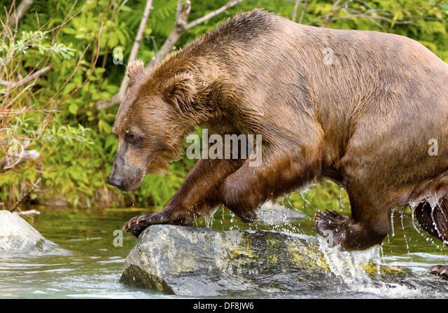 Big bear lake fishing stock photos big bear lake fishing for Fishing in big bear
