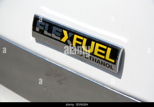 flexible fuel vehicle essay Sample essay topic, essay writing: fuel systems  steel lines and flexible hoses carry the fuel from  many of these filters are mounted under the vehicle and.
