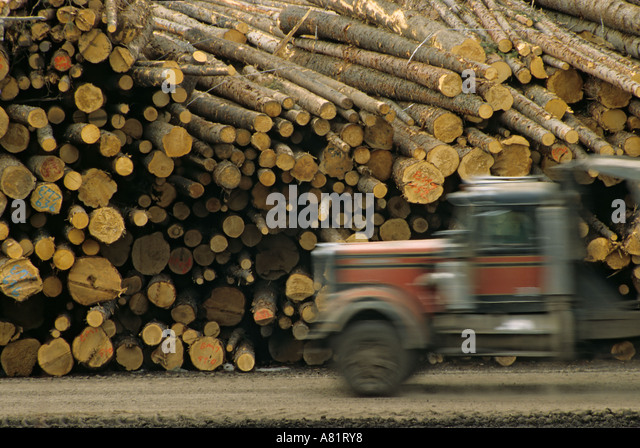 Logging Truck Accident Vancouver Island