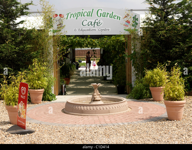 Marvelous Garden Cafe Stock Photos  Garden Cafe Stock Images  Alamy With Marvelous Surrey England Mother And Child Walking Through Tropical Garden Cafe And  Education Centre  Stock Image With Enchanting Jersey Gardens How To Get There Also Happy Garden Menu In Addition Skip Garden Kings Cross And Princess Street Gardens As Well As Free Garden Design App Additionally Trains To London From Welwyn Garden City From Alamycom With   Marvelous Garden Cafe Stock Photos  Garden Cafe Stock Images  Alamy With Enchanting Surrey England Mother And Child Walking Through Tropical Garden Cafe And  Education Centre  Stock Image And Marvelous Jersey Gardens How To Get There Also Happy Garden Menu In Addition Skip Garden Kings Cross From Alamycom