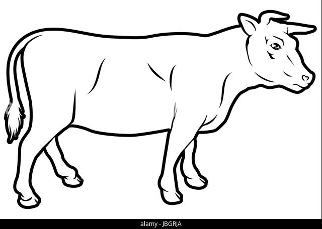 Bull And Butcher Stock Photos Bull And Butcher Stock Images