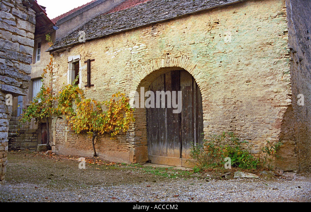 Old French Stone Barn With Arched Door And Grape Vine   Stock Image