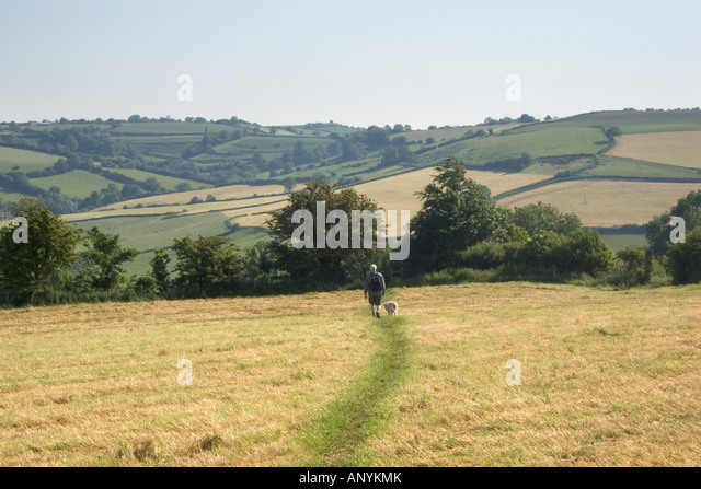 England Gloucestershire Cotswolds near Bath a man and a dog walking on the  Cotswold Way  Cotswolds Countryside Bath Stock Photos   Cotswolds Countryside  . Dog Walkers Bath Area. Home Design Ideas