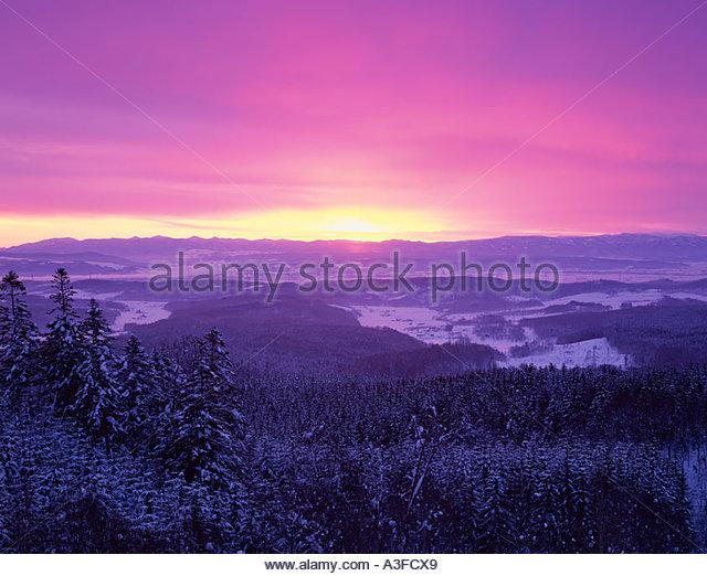 Nayoro Japan  city images : ... Mizuho park Nayoro shi Hokkaido Japan Forest Snow Clouds Stock Image