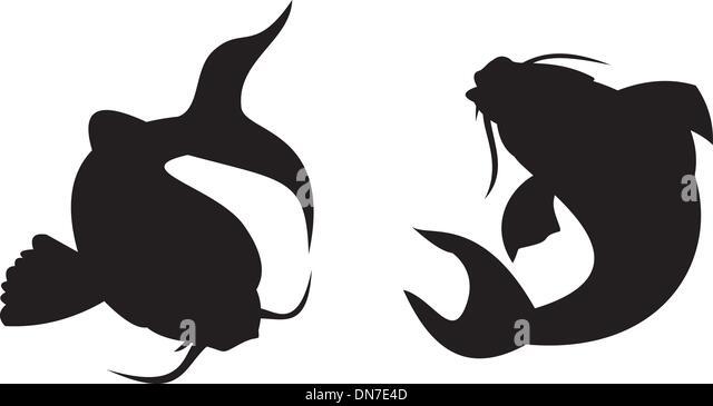 koi carp silhouette stock image