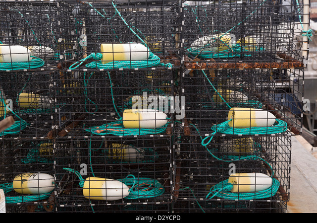 Lobster traps stock photos lobster traps stock images for Lobster fishing san diego