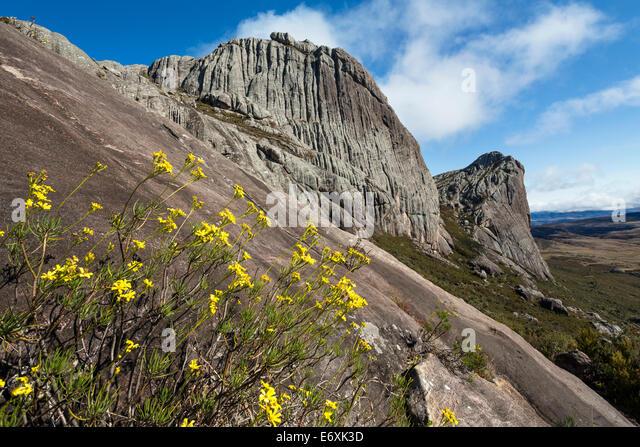 Andringitra National Park Stock Photos & Andringitra ...