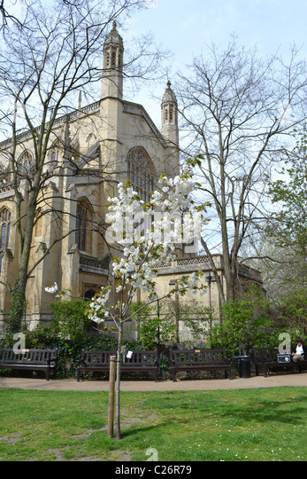 Stunning Church Gardens Stock Photos  Church Gardens Stock Images  Alamy With Glamorous St Lukes Church And Gardens Chelsea London Uk Artifex Lucis  Stock With Amusing Food Around Covent Garden Also Mud Island Garden Centre In Addition St Andrews Botanic Gardens And Phoenix Gardens London As Well As Kew Gardens Directions Additionally Garden Chair Hire From Alamycom With   Glamorous Church Gardens Stock Photos  Church Gardens Stock Images  Alamy With Amusing St Lukes Church And Gardens Chelsea London Uk Artifex Lucis  Stock And Stunning Food Around Covent Garden Also Mud Island Garden Centre In Addition St Andrews Botanic Gardens From Alamycom