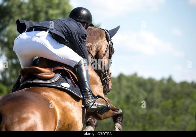 Equestrian Horse Jumping Stock Photos & Equestrian Horse ...