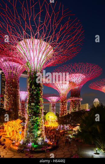 illuminated supertrees at garden by the bay singapore stock image