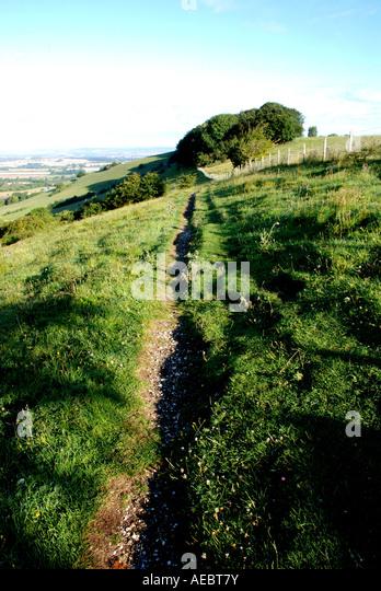 Aston Rowant United Kingdom  City new picture : Aston Rowant Nature Reserve, Oxfordshire, England, UK Stock Image