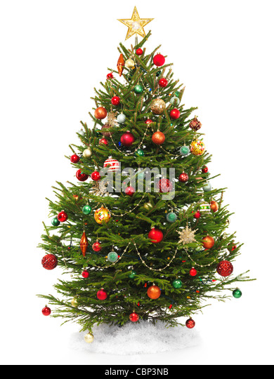 beautiful decorated christmas tree with a star topper isolated on white background stock image
