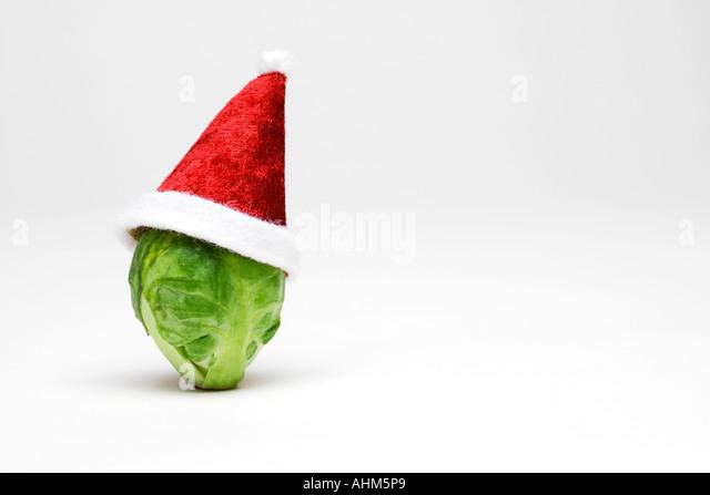 Humourous christmas stock photos amp humourous christmas stock images