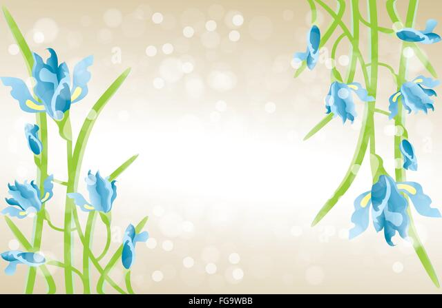 Blue iris petal stock vector images alamy card template with iris flowers beautiful illustration with place for text stock vector pronofoot35fo Choice Image