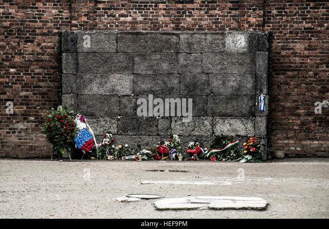 an analysis of the black wall execution site in the auschwitz concentration camp Pilecki spent 31 months in the notorious concentration camp,  the fourth and most heavy kind of punishment was an execution by shooting: death effected quickly, how much more humane and desired by those undergoing torture  those doomed stood naked in a row against the black wall, and he put a small calibre rifle under the.