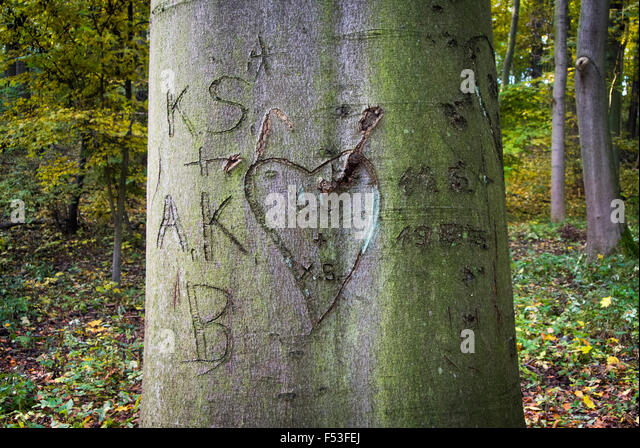 Tree Carvings Stock Photos Tree Carvings Stock Images