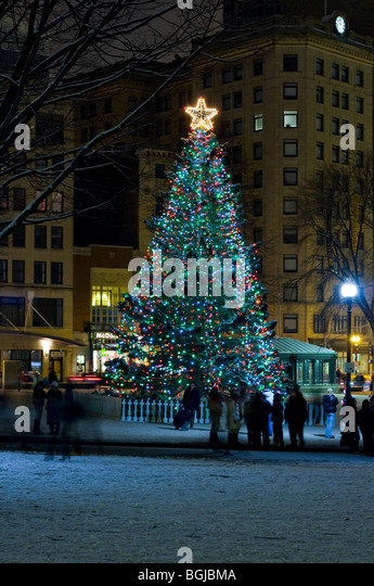 Boston christmas lights stock photos boston christmas lights stock christmas tree in boston common boston massachusetts stock image sciox Images