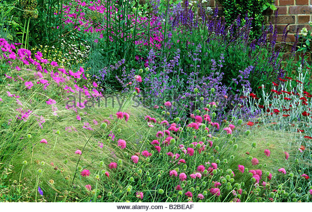 Home farm hampshire design fiona lawrenson perennial for Perennial border design plans