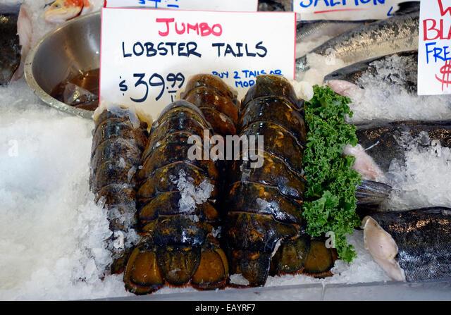 rock lobster tails for sale