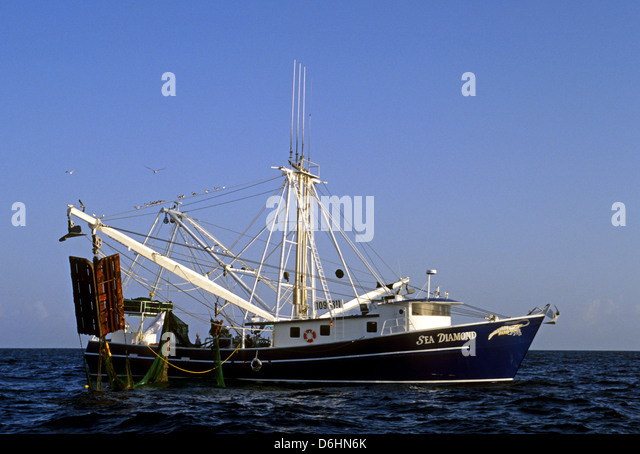 Commercial fishing stock photos commercial fishing stock for Stock fish for sale texas