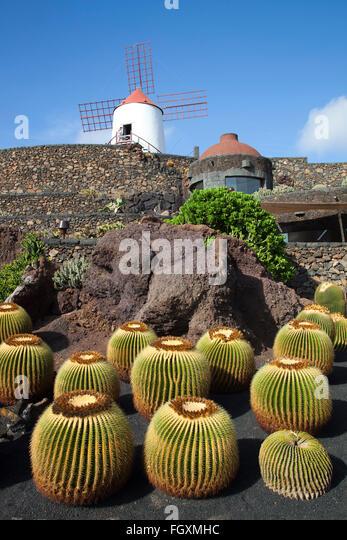 jardin de cactus by artist cesar manrique guatiza area lanzarote island canary archipelago