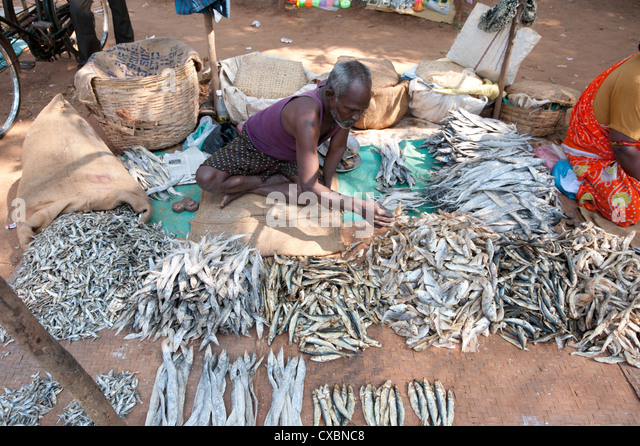 Dried fish market stock photos dried fish market stock for River fish market