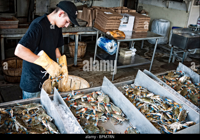 Fish Market Usa Stock Photos Fish Market Usa Stock