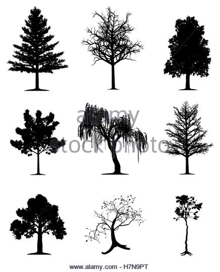 weeping stock vector images alamy