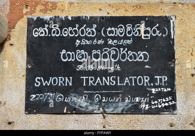 english polish dictionary online google