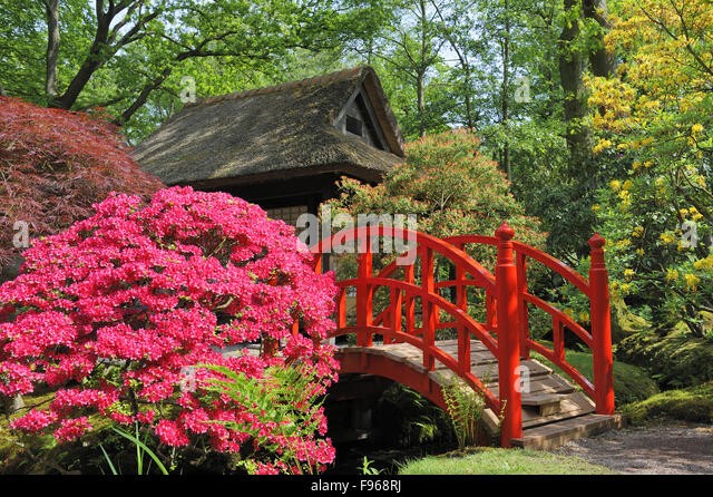 japanese garden red bridge stock photos japanese garden red - Red Japanese Garden Bridge