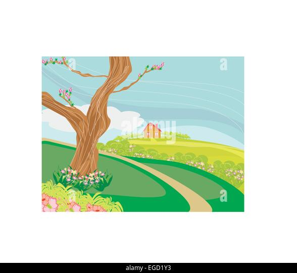 Paddy Field Illustration Stock - 36.5KB