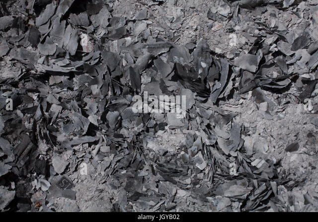 pile of ashes stock photos amp pile of ashes stock images