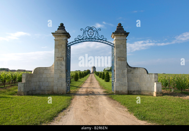 bordeaux vineyard stock photos bordeaux vineyard stock images alamy. Black Bedroom Furniture Sets. Home Design Ideas