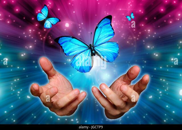 Monarch butterflies flying away - photo#52