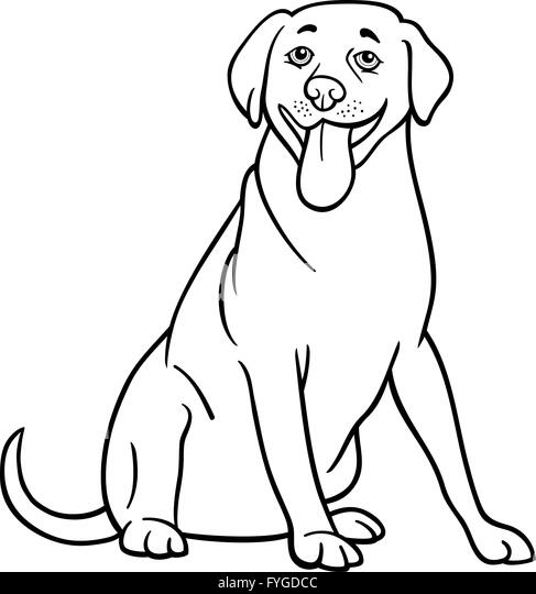 labrador retriever dog cartoon for coloring stock image
