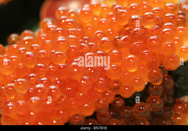 Fish eggs stock photos fish eggs stock images alamy for Japanese fish eggs